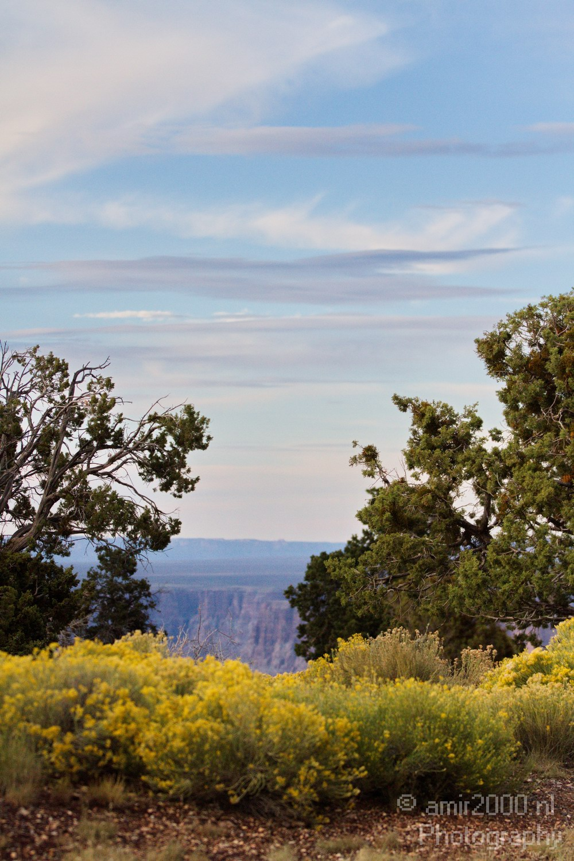 amir2000 nl photography   Grand Canyon − South Rim